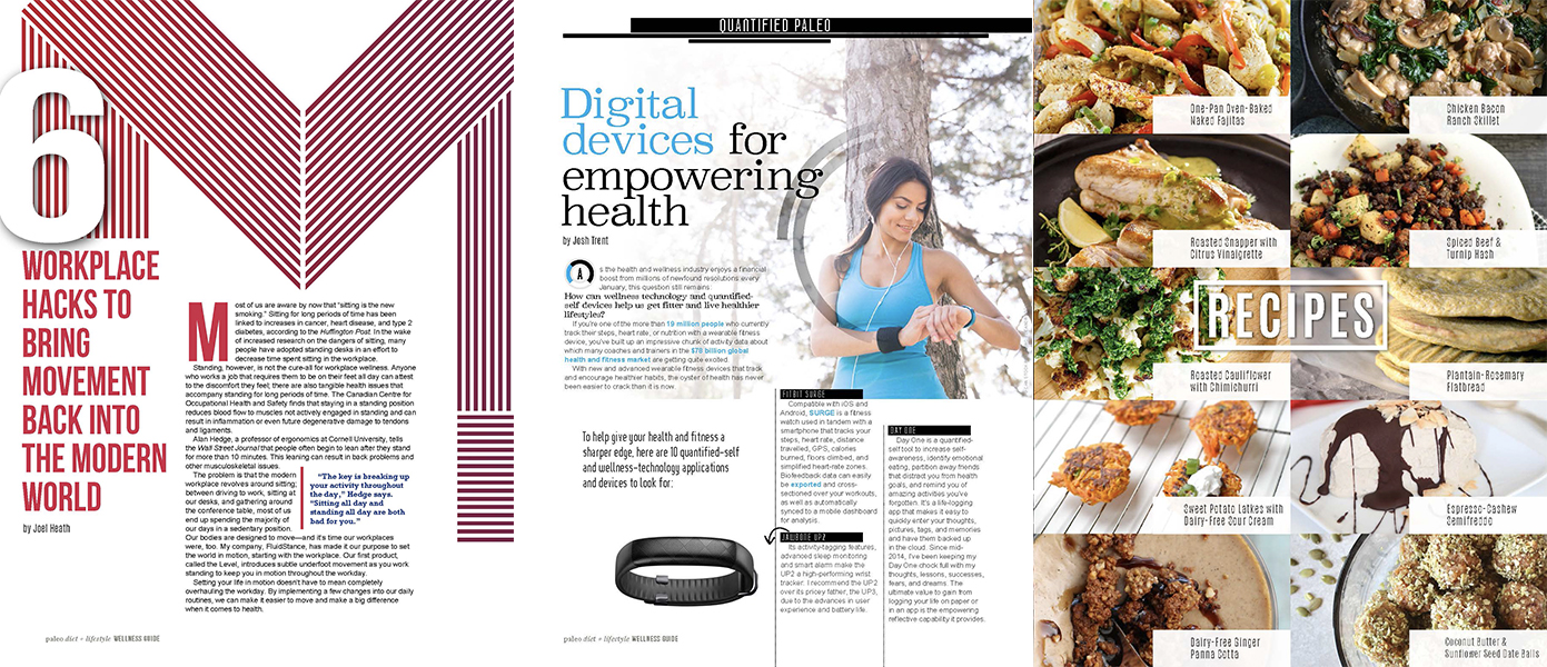 Paleo Diet and Lifestyle Wellness Guide ebook