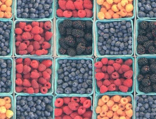Our Top Ten List of Berries